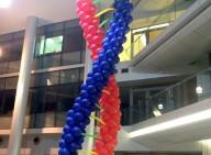 מייצג DNA ענק